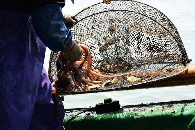 八代舟出浮き タコ漁